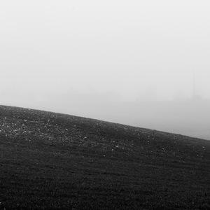 Champ dans le brouillard #2