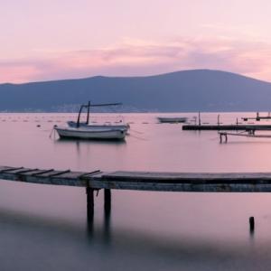 mer, rose, pose longue, ponton, montenegro