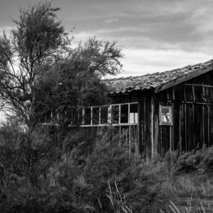 cabane, Oleron