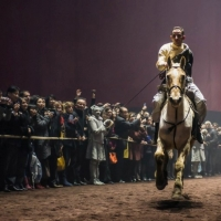spectacle, cheval