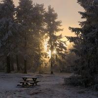 Sous la neige, coucher de soleil