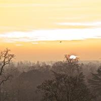 matinée brumeuse et colorée de début d'année