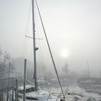 paysage, hiver