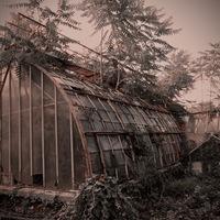 Jardin d'agronomie tropicale de Paris