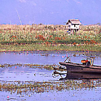 Birmanie, lac Inle