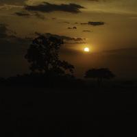 Coucher soleil Masaï Mara