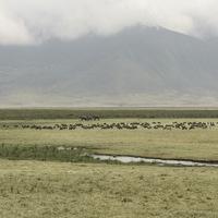 Vue du cratère du Ngorongoro